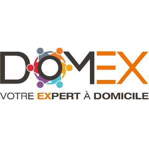 logo domex